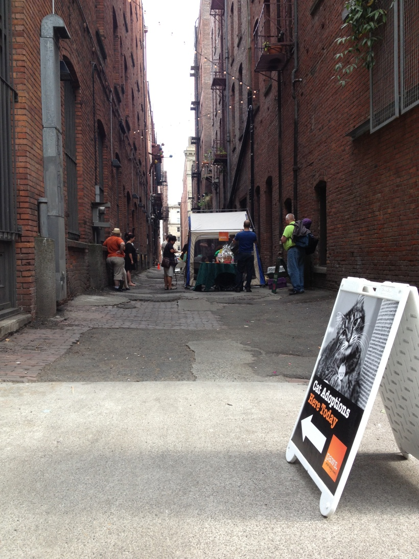 nord alley - 1st ave s & occidental ave s - and the ever popular kitten kissing booth